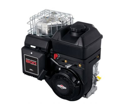 Rasenmäher Motor Briggs & Stratton 800 5,5PS Welle 19,05/61,50mm